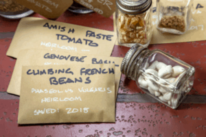 Seed packets labeled by hand for saving