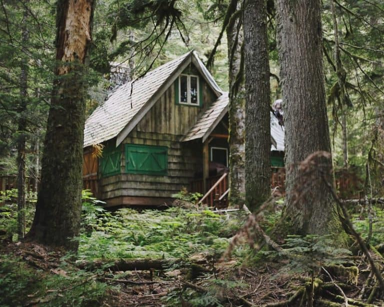 Home in woods off grid